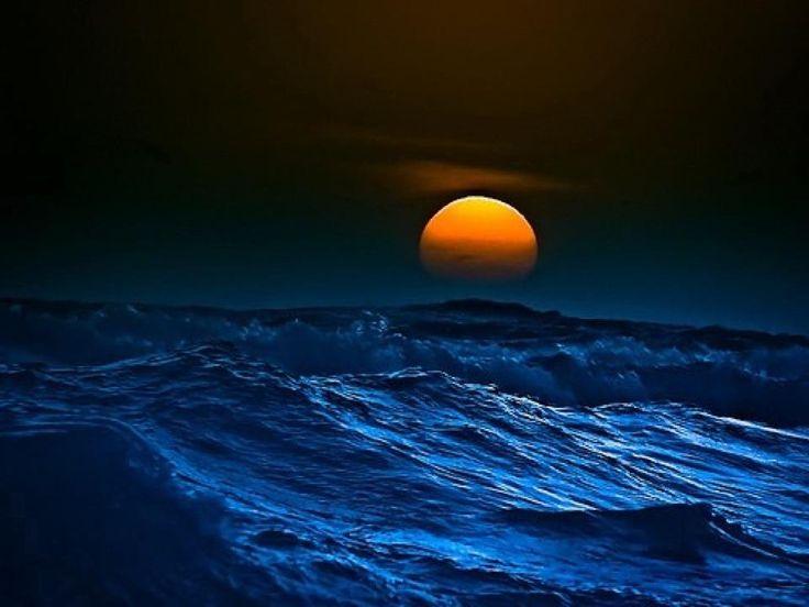 oceanHarvest Moon, The Ocean, Beautiful, Sweets Dreams, Full Moon, Ocean Sunsets, Flower Fields, The Waves, Deep Blue Sea