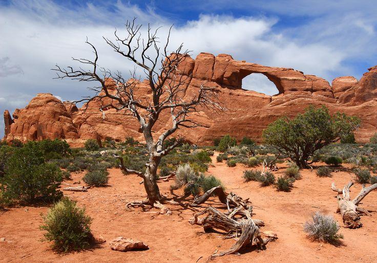 Arches National Park                                                                                                                                                                                 Plus