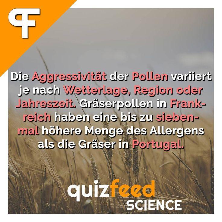 Die Aggressivität der Pollen variiert je nach Wetterlage, Region oder Jahreszeit. Gräserpollen in Frankreich haben eine bis zu sieben-mal höhere Menge des Allergens als die Gräser in Portugal.