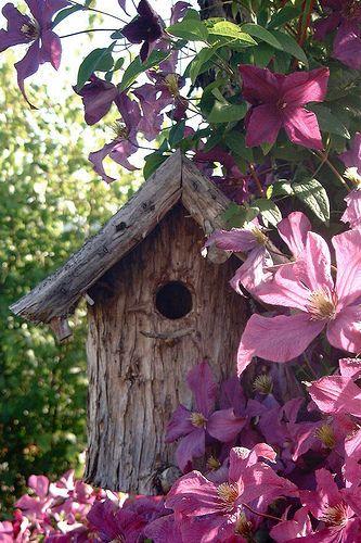 Love clematis flowers ! Love rustic bird feeders! Love this!