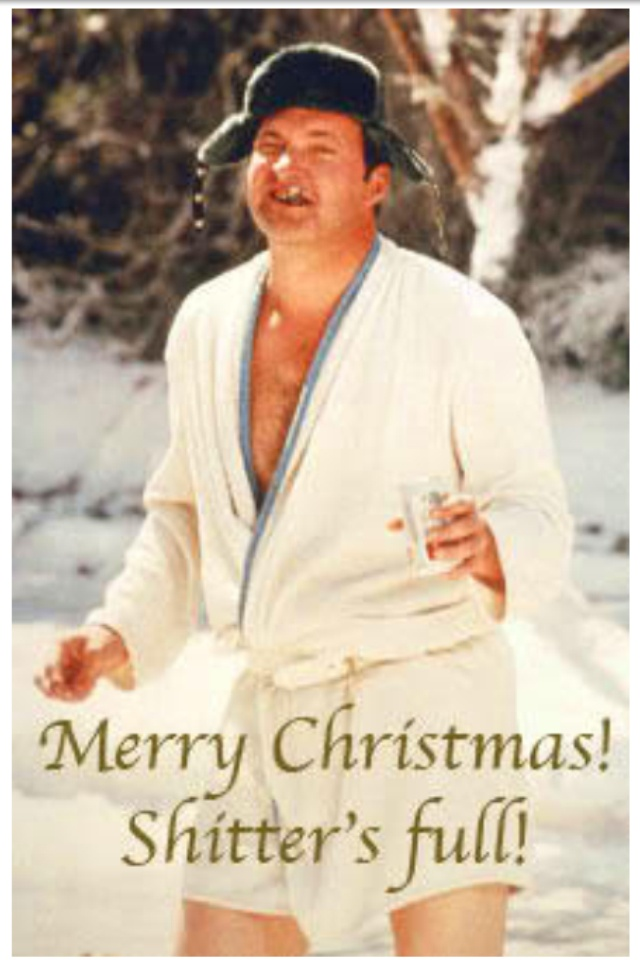 85 best National Lampoons Christmas Vacation images on Pinterest ...
