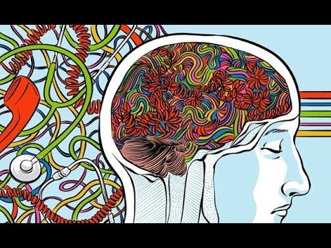 The Science of Chakras, The Vagus Nerve & Meditation