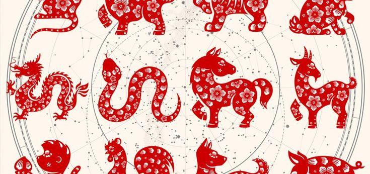 ¿Quieres saber cuál es tu personalidad según tu signo chino? En este artículo analizamos las características de cada uno de los 12 animales del horóscopo.