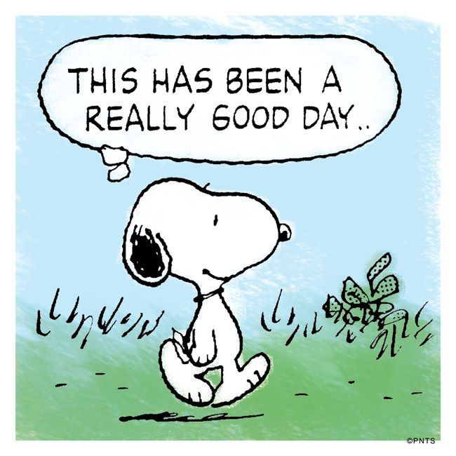 Happy New Year Charlie Brown Quotes: 17 Best Snoopy Quotes Love On Pinterest