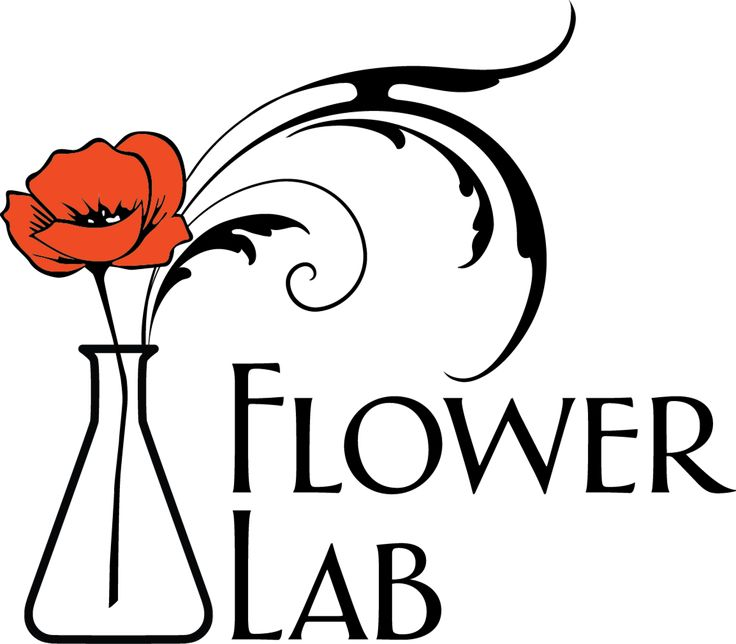 Local, seasonal, creative flower bouquets and floral arrangements created  in Seattle and delivered in Seattle and abroad.  Flower Delivery, Seattle  Florist, Wedding Flowers, Event Flowers, Birthdays, Anniversary, New Baby,  New Home.