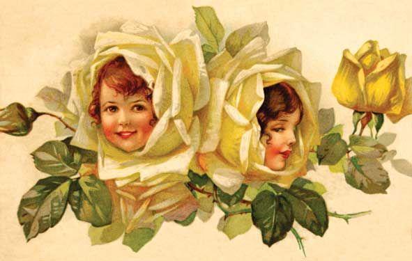 Resultado de imagem para vintage roses faces photos