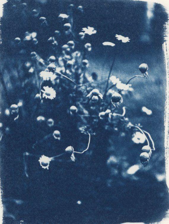Giardino cianotipo Print mamma di erinhall su Etsy