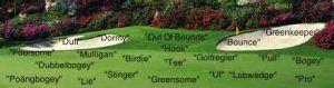 Vanliga golftermer