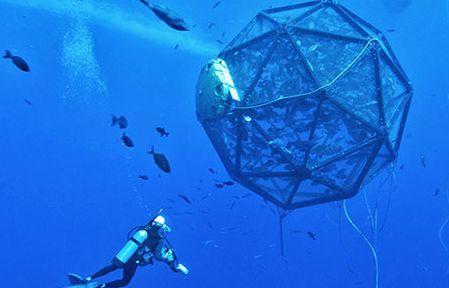 Wilfried Ellmer Marine Development, http://yook3.com, Key Player Network, http://latinindustry.biz, http://concretesubmarine.com.