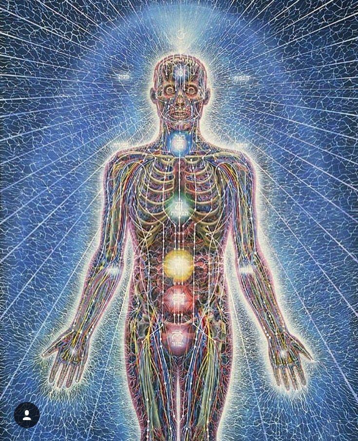 Физическое тело человека картинки