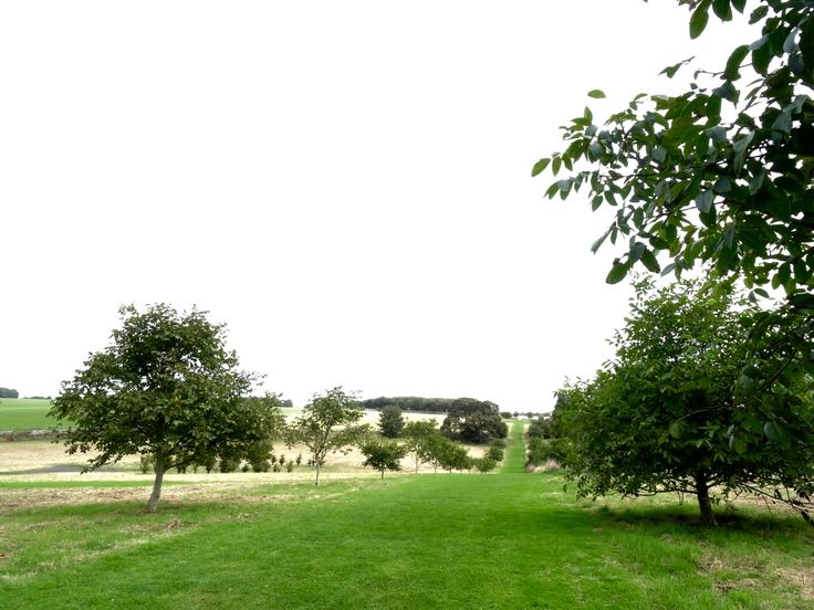 Grab some fresh air with a meadow walk, right on our doorstep at Calcot http://www.calcot.co