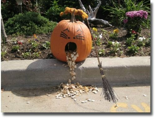 image detail for outdoor halloween decorations halloween craft ideas