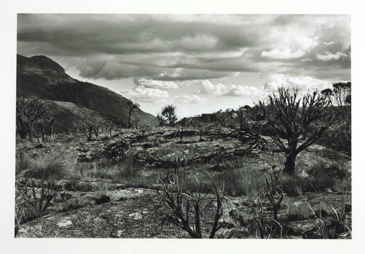Richard Long- Circle in Africa, 1978.