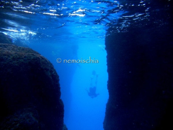 """ischia, snorkeling at the """"elephant arch"""""""