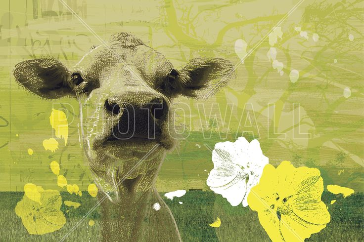Homeless Cow - Fototapeter & Tapeter - Photowall