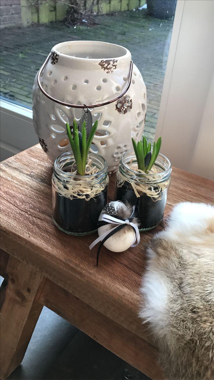 Lente decoratie  Bloembolletjes in kleine glazen snoeppotjes