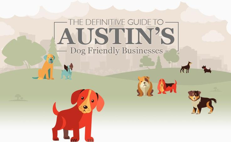Austin is the rescue pet capital of the world. We don't go anywhere without our dogs! // The Definitive Guide to Austin's Dog Friendly Businesses