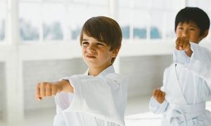 Groupon - 10 or 20 Children's or Adult Martial Arts Classes with a Uniform at East West Team Martial Arts Philly (Up to 81% Off) in East West Team Martial Arts Philly. Groupon deal price: $29