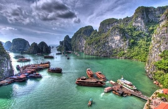 Au Vietnam, la Baie d'Halong compte un nombre incalculable d'îles, désertes ou peuplées de pêcheurs. Dans la baie vivent en effet plus de 200 espèces différentes de poissons et 450 de mollusques.