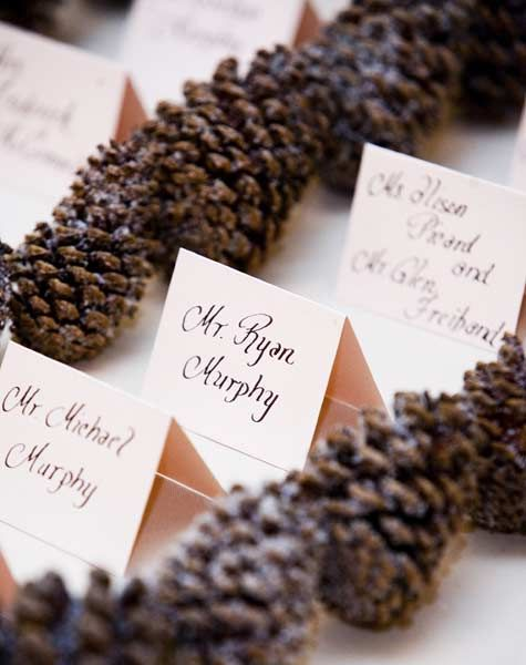 We plan to have pine cones decorating our tables along with some cute place cards--might even make those ourselves. :-)  I like the idea of calligraphy....just very simple place cards.