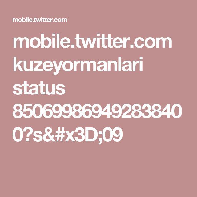 mobile.twitter.com kuzeyormanlari status 850699869492838400?s=09