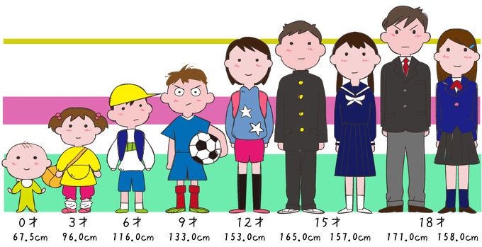 身長で見る成長 子どもの身長の伸び イラスト