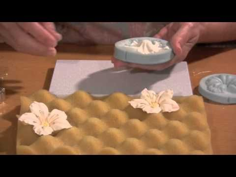 This video shows you how to make a gumpaste petunia using a silicone veiner. Also visit my site http://seasonofsweets.com