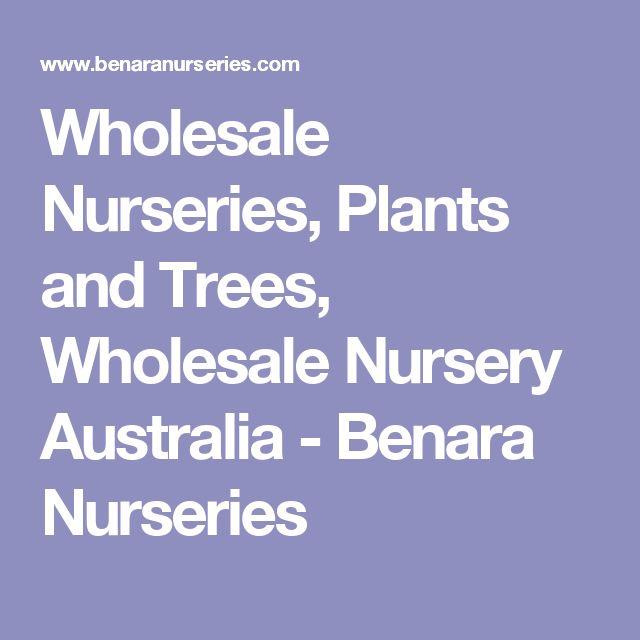 Wholesale Nurseries, Plants and Trees, Wholesale Nursery Australia - Benara Nurseries