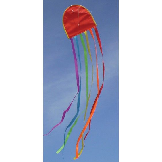 Windspeed Kites - Jellyfish Single String Kite  My brother had one of these as a kid. It's such a reliable easy flyer. #Entropywishlist #pintowin