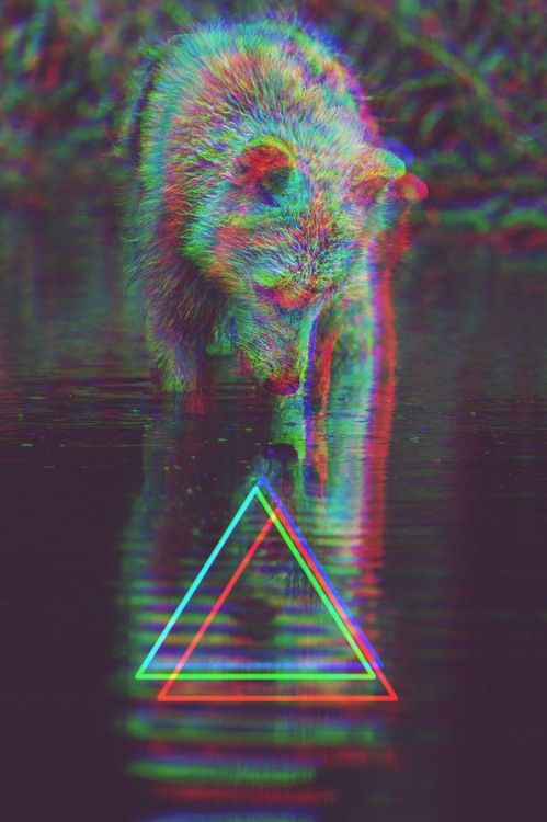 The infamous hipster animal, triangle, and filter.  Click here for more images:  http://sussle.org/t/Hipster