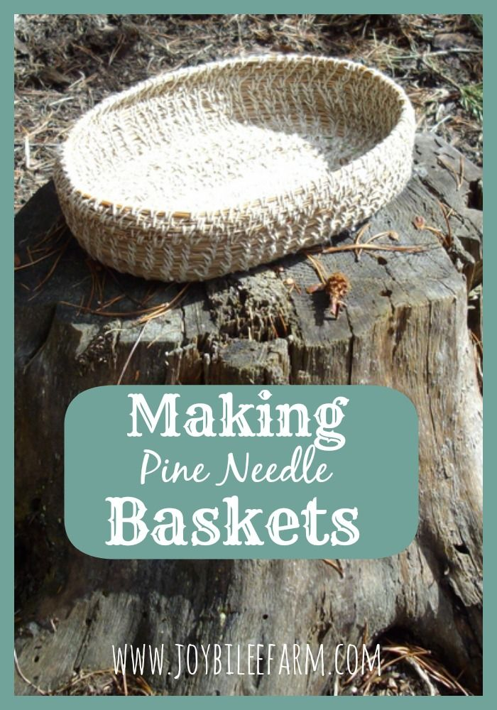 needle craft ideas 1000 images about pine needle baskets on 2544