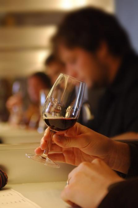 Wine-tasting and oenology Université du Vin de Suze-la-Rousse Full article : http://france.ohlala-bravo.com/magazine-specialized-schools-universite-du-vin.html