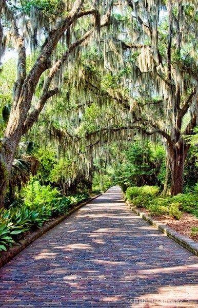 Beautiful Gardens Around The World Maclay Gardens Park