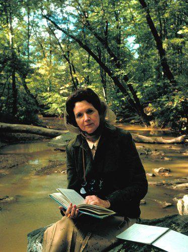 El caso de Rachel Carson, por Eduardo Angulo