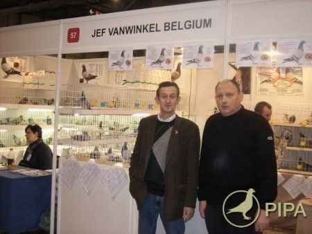 Central Europe Exhibition of Racing Pigeons January 29-31 2010 in Sosnowiec (Poland)   PIPA