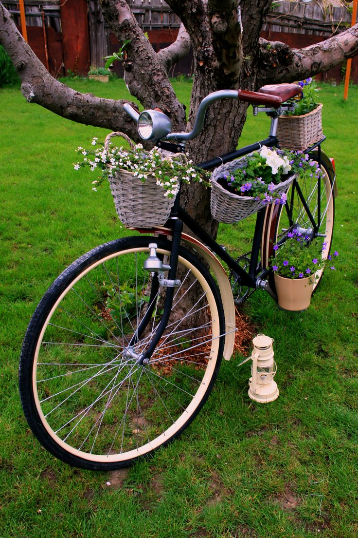 Grandfathers bycicle with flowers