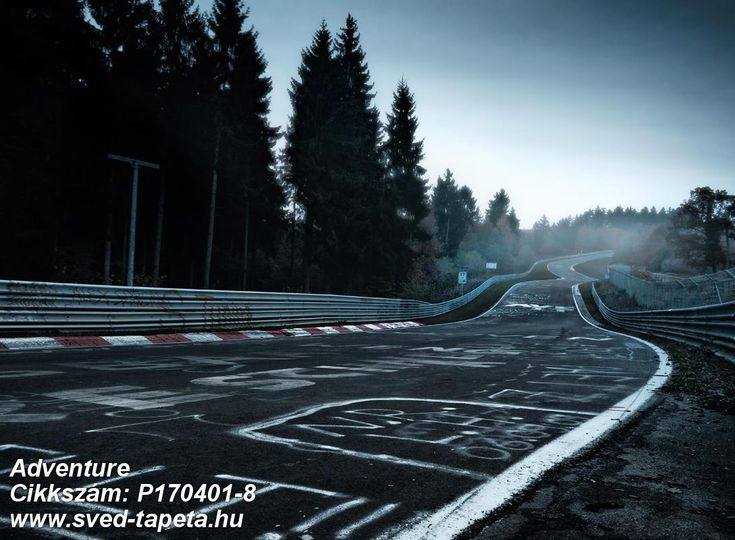 The Nürburgring Nordschleife race track, Germany, 21 kilometres long with 73 named corners. The test track is one of the most famous in the world and is considered to be the most dangerous of them all. The stretch is known for the graffiti on the track. ☞ #wall #decor #wallpaper #design #tapeta #foto #poster