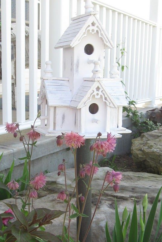 Dream Bird House,,,,,more of a chickadee condo