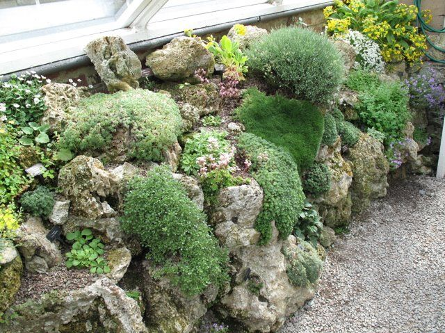 miniature garden area in a rock garden - Rock Wall Garden Designs
