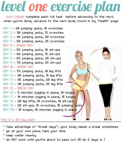 Level One Exercise Plan But don't know if I can do jumping jacks anymore. soon retirement will tell.