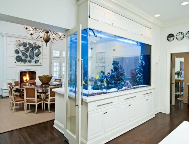 aquarium ideen einrichtung blaue lampen raumteiler eingebaut