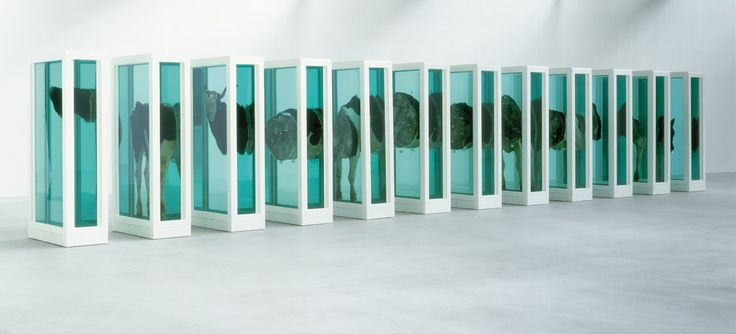 Some Comfort Gained from the Acceptance of the Inherent Lies in Everything -- Damien Hirst