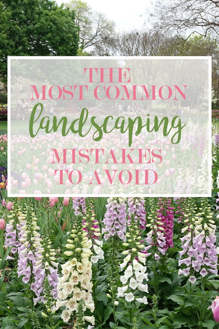 603 best images about southern garden on pinterest for Garden design hacks