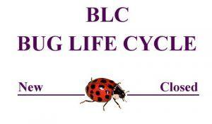<b>BUG LIFE CYCLE</b>