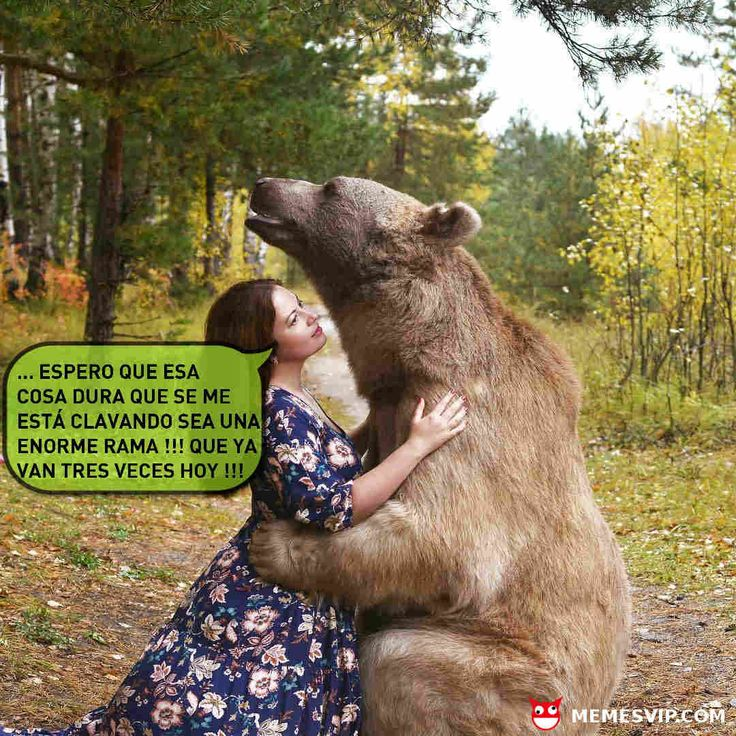 Meme oso vicioso #chiste #meme #español #memesenespañol #2017 #memesvip #memesvipcom #chistecorto #humor #españa #eeuu #usa #mexico #argentina #madrid #barcelona #sevilla #valencia #la #miami #venezuela #df #beardlife #animales #naturaleza #vida #life #amores #san #valentin #fashion #beautiful