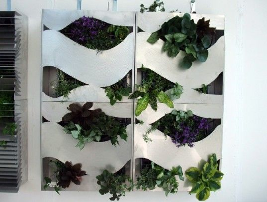 william lee, living wall, green wall, sustainable design, green design, urban design, green building, sustainable building, planter, gardening, vertical garden, architecture, sustainable architecture