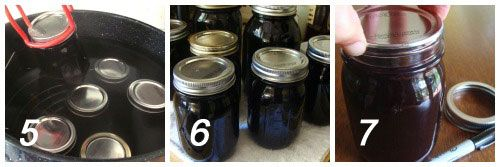 Canned Black Current Juice Concentrate {For Italian Sodas}