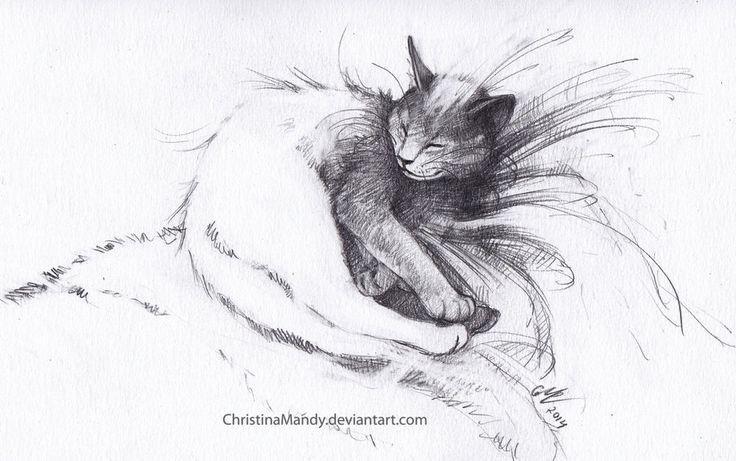 My cat by ChristinaMandy on DeviantArt