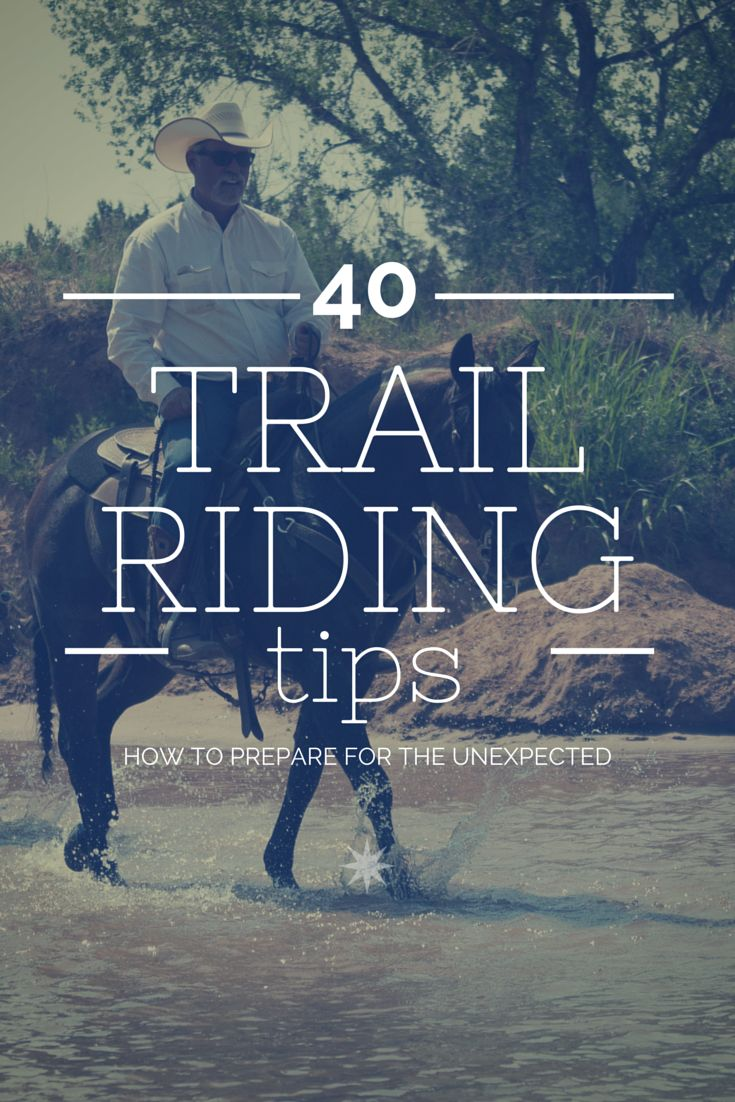 40 Trail Riding Tips | Get the most out of your horseback riding adventures.