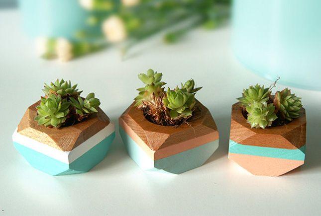 Brighten up your desk with geo mini planters.